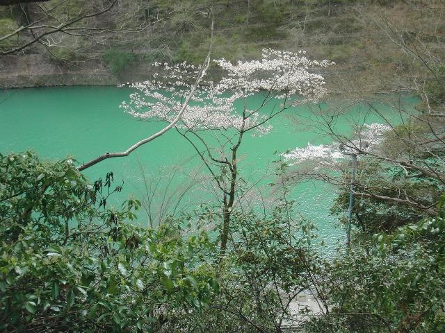小倉百人一首文芸苑から見た桂川