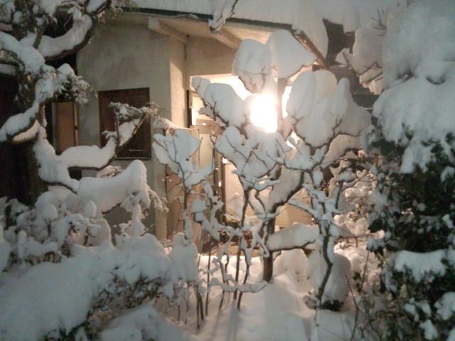 大雪と外灯