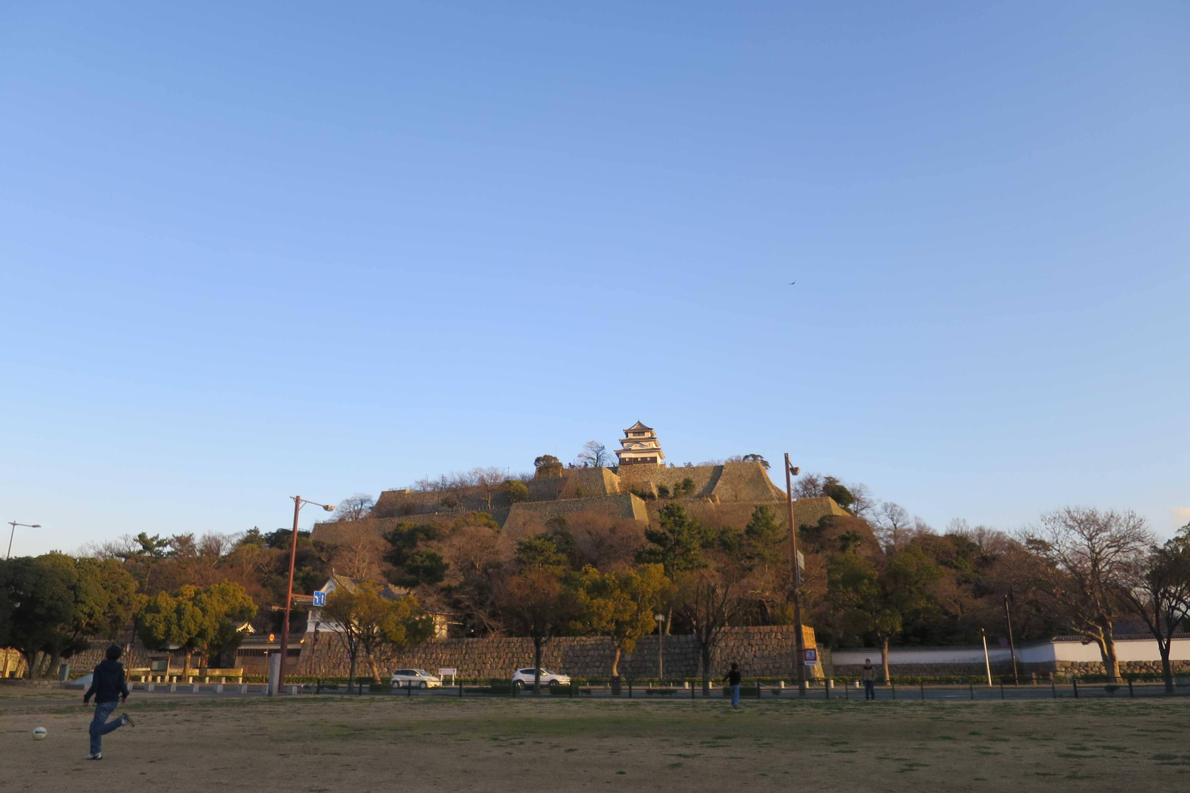 市民ひろばから見えた丸亀城