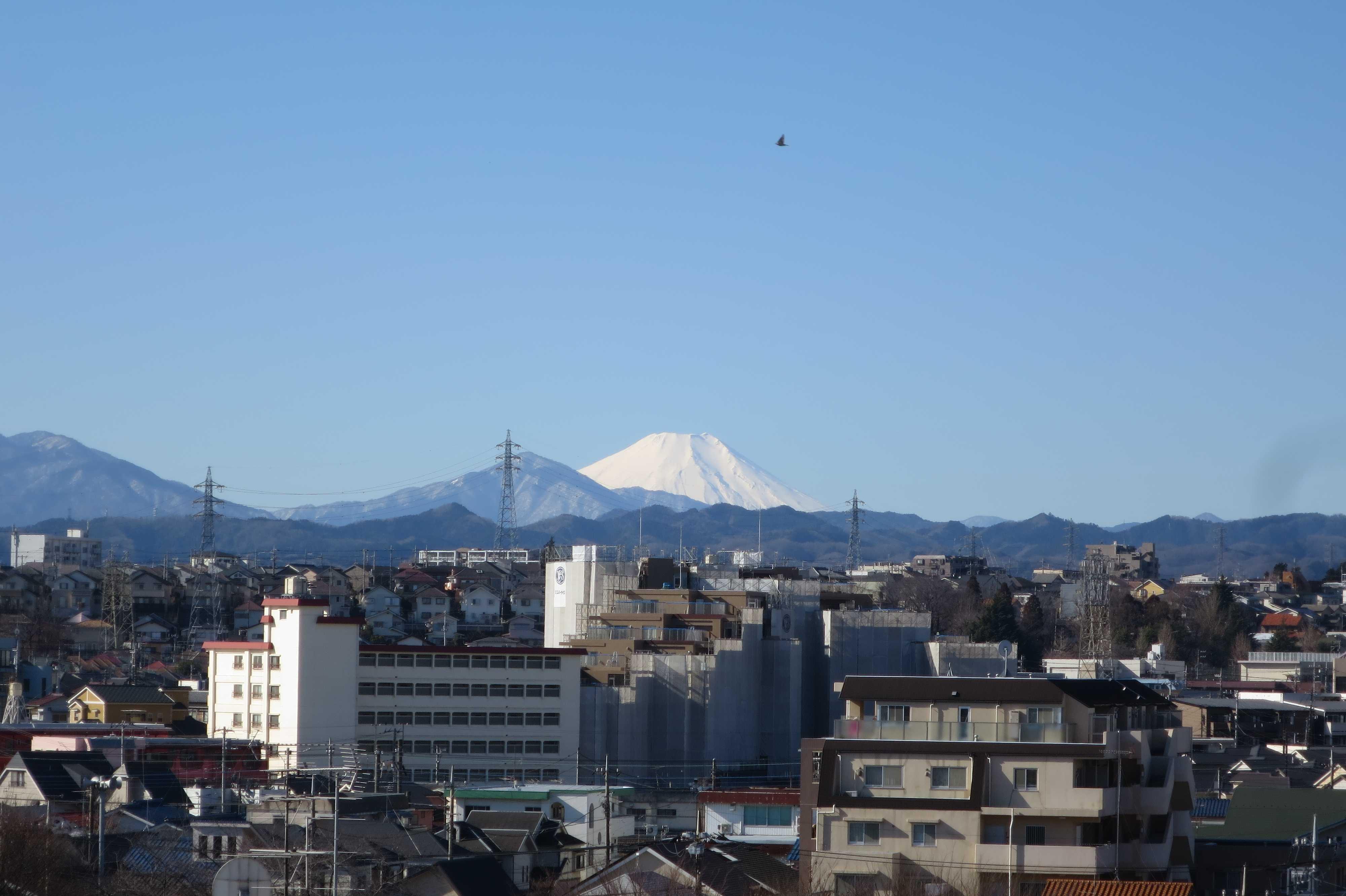 富士山が見える場所