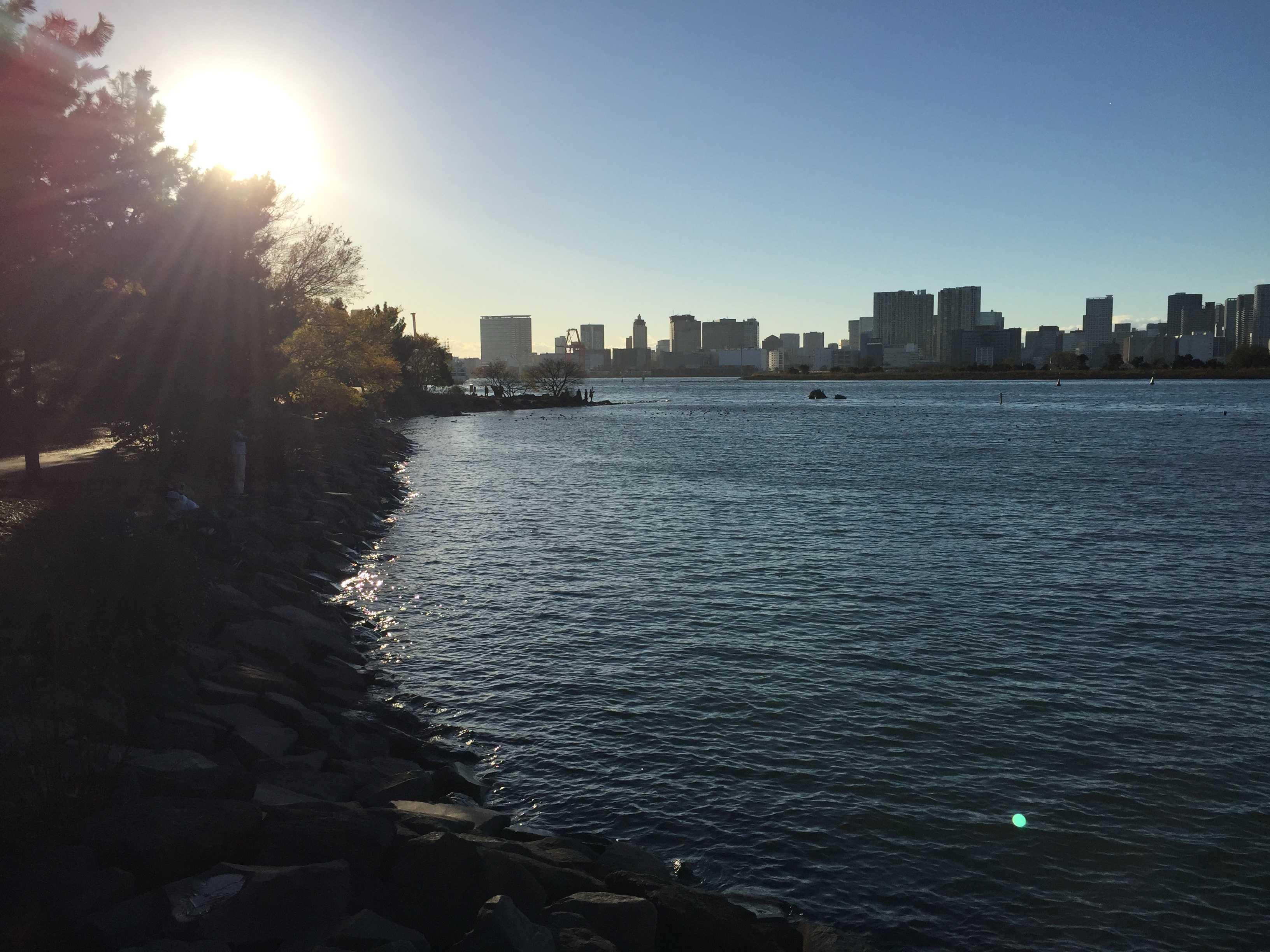 磯 - お台場海浜公園