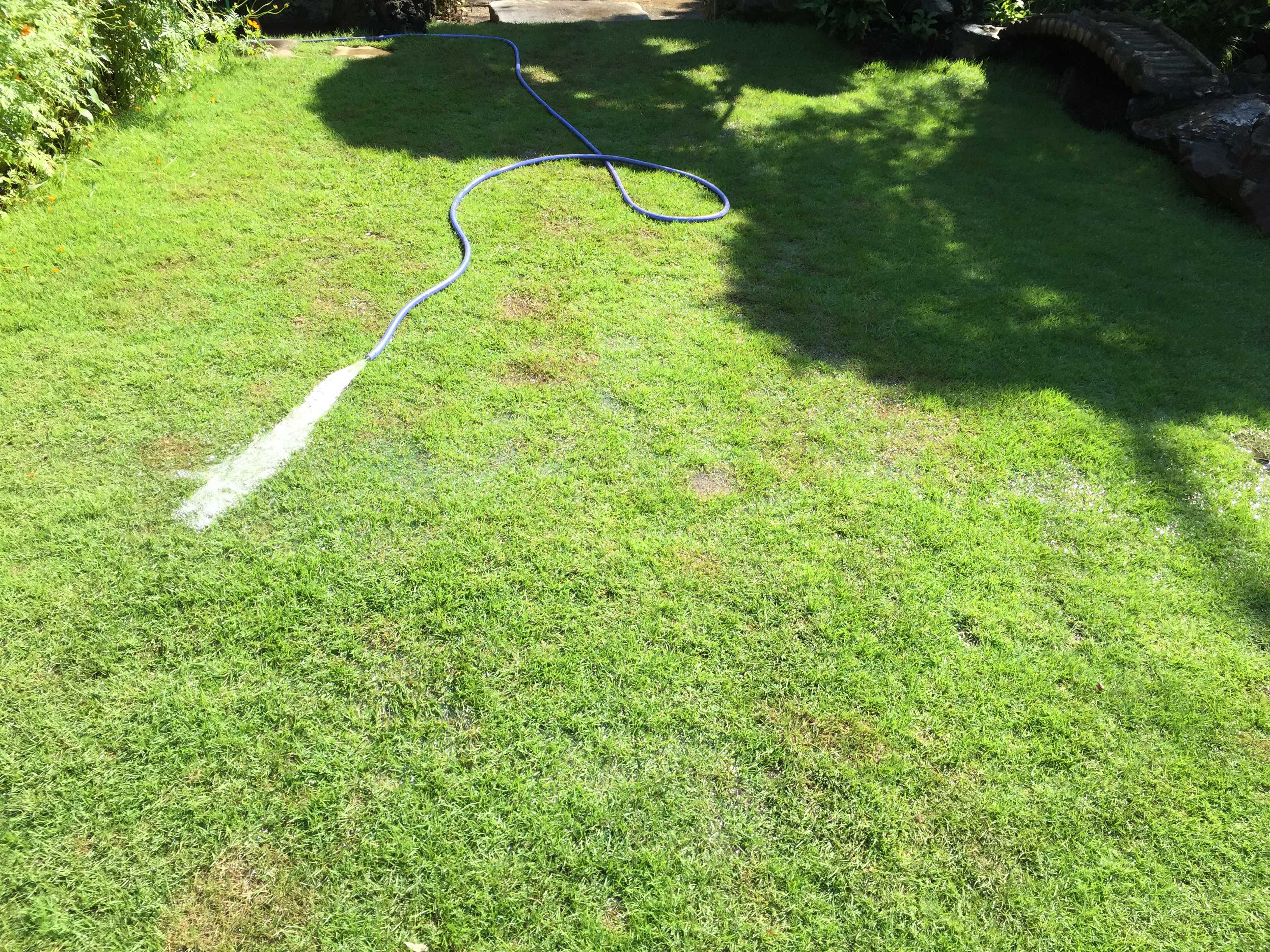 芝生の水撒き