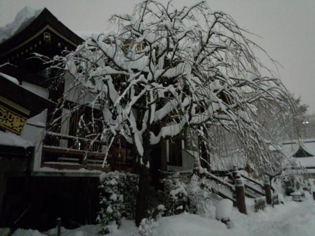 大雪の日の福伝寺(東京都八王子市)