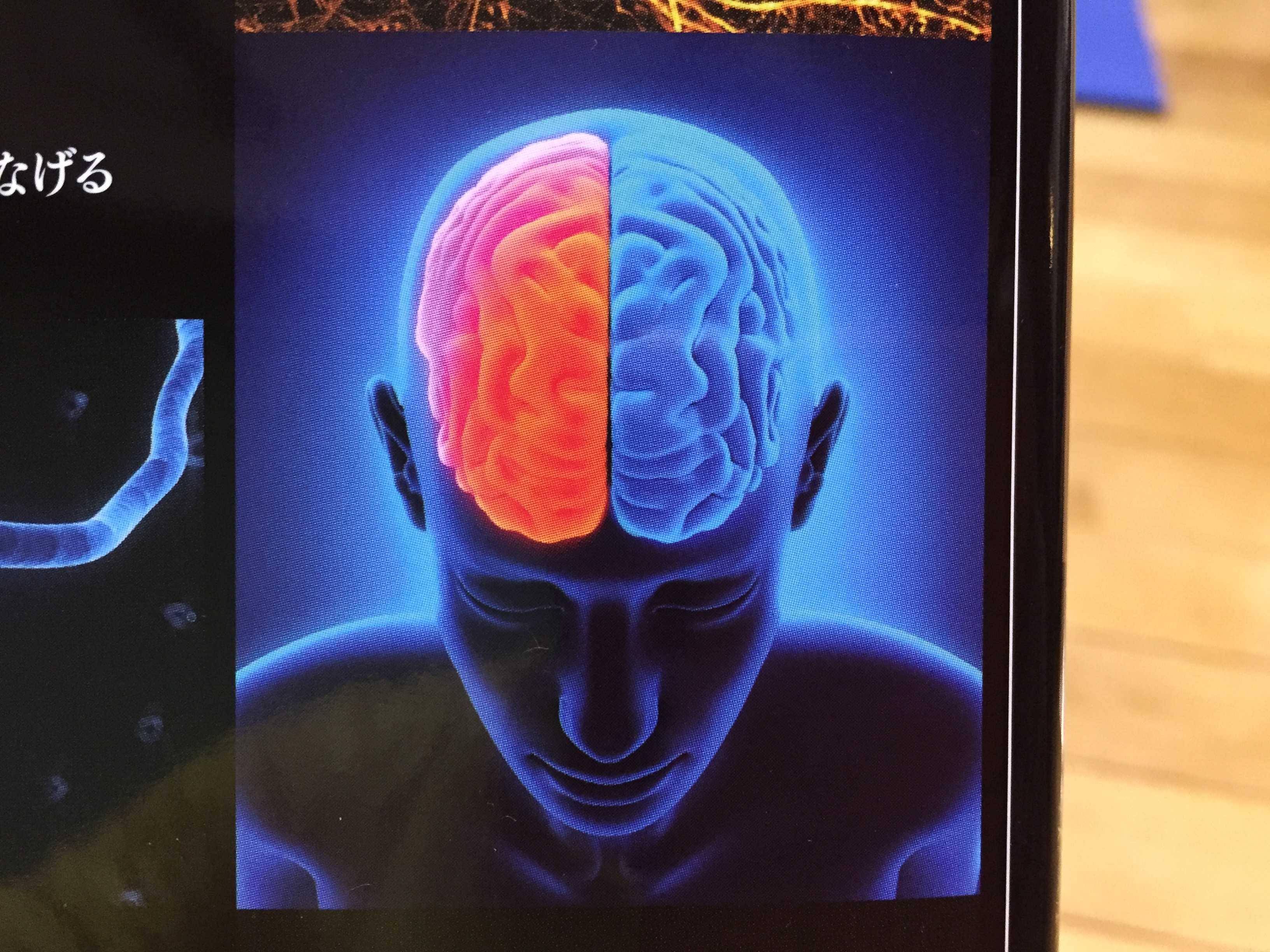 【大人のための図鑑】脳と心のしくみ 新星出版社