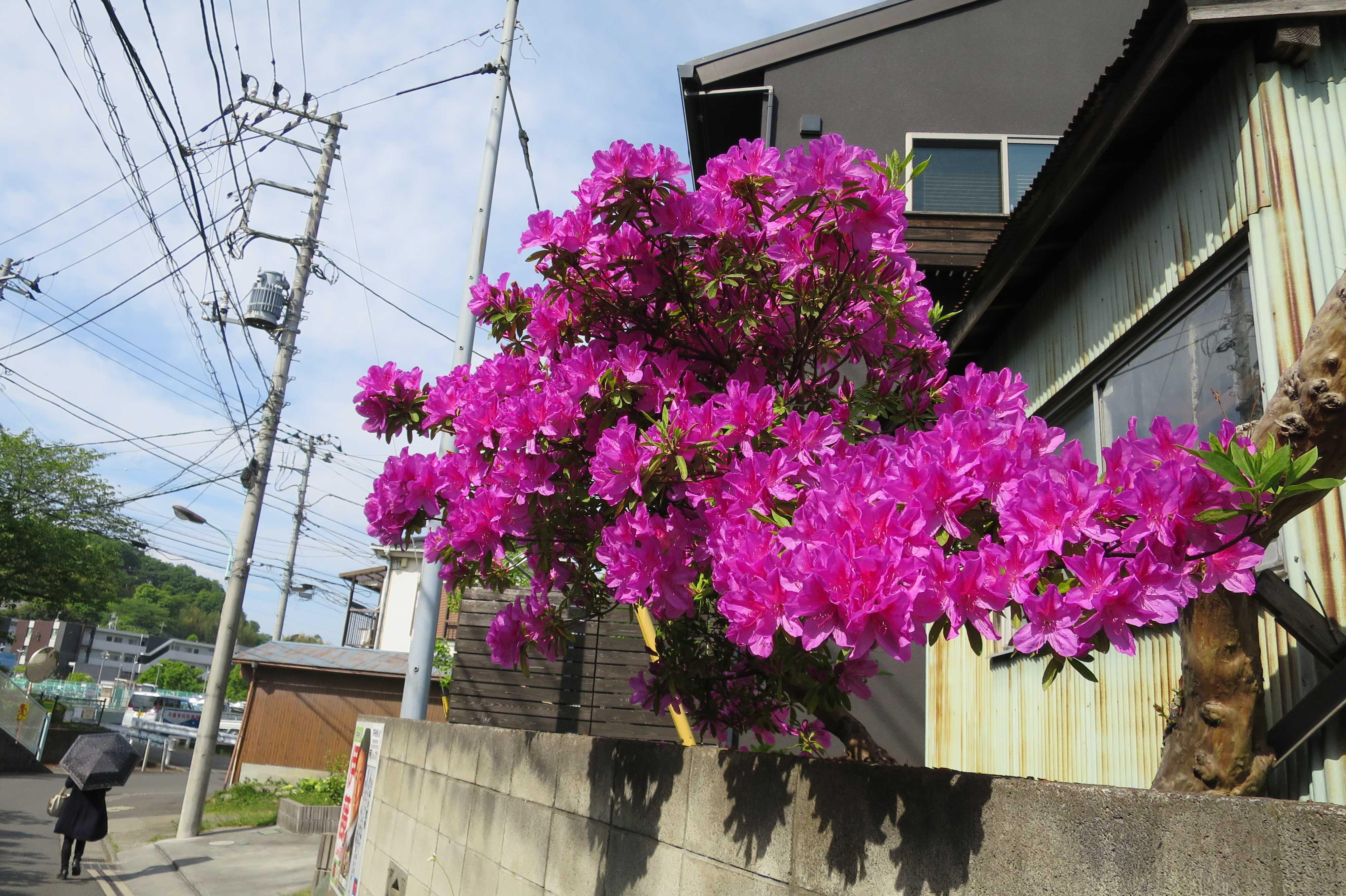 小田急鶴川駅前