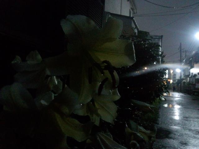 西国分寺駅 北口