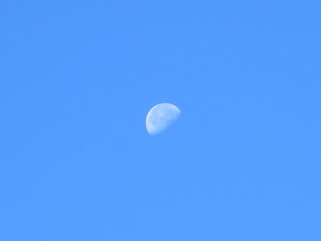 白いお月様