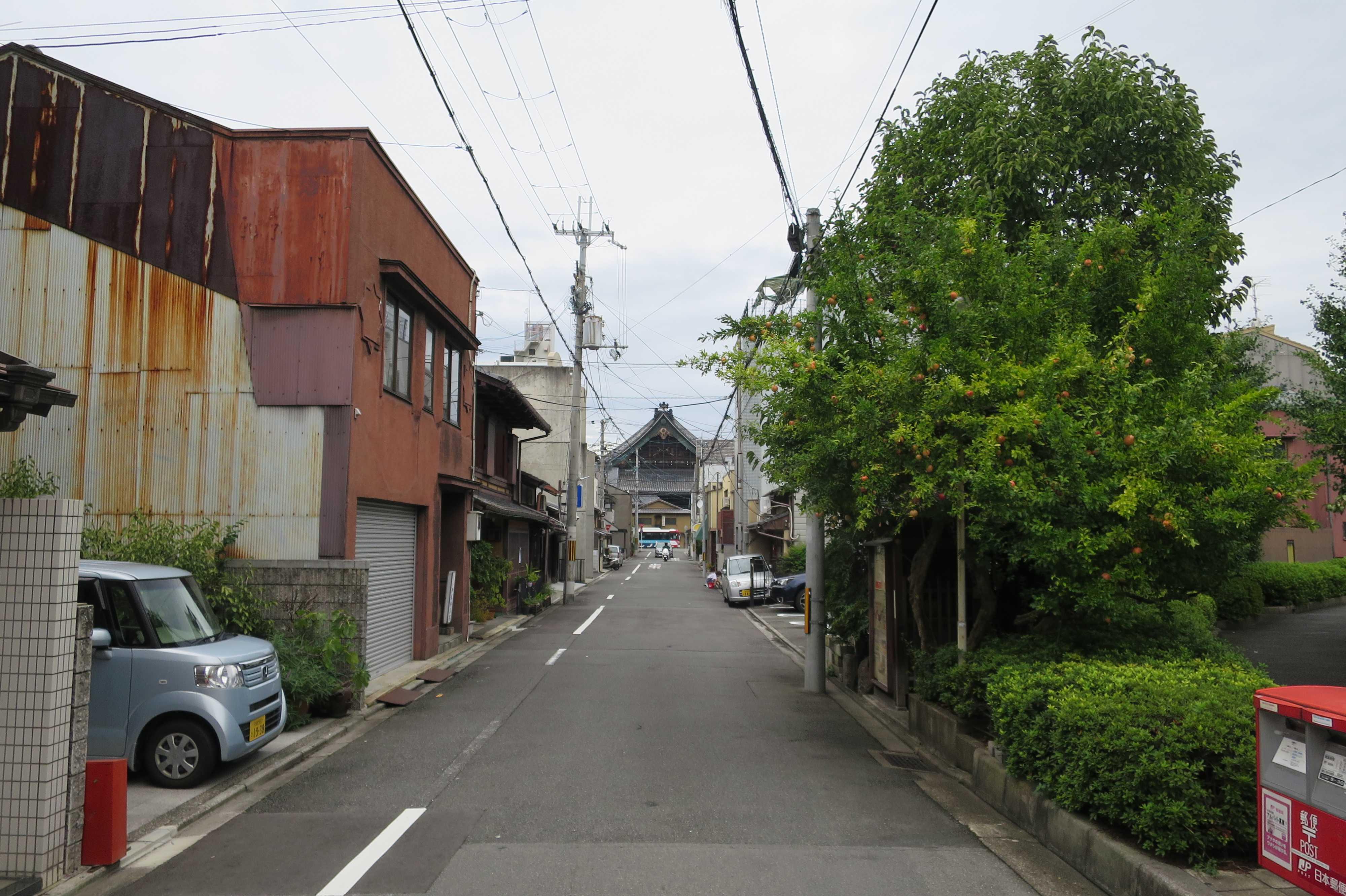 西本願寺が見える道
