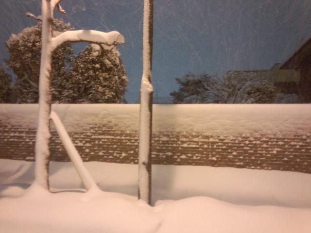 大雪と赤レンガの壁