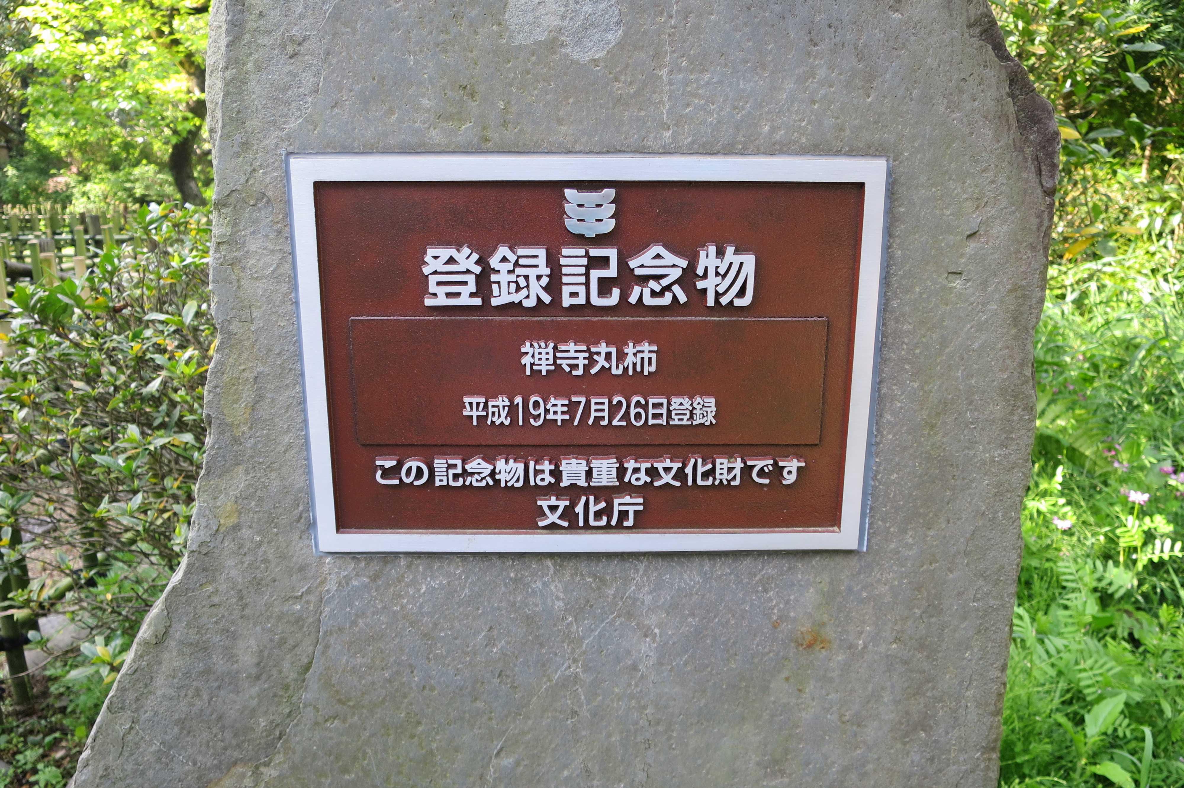 登録記念物 禅寺丸柿 平成19年7月26日登録