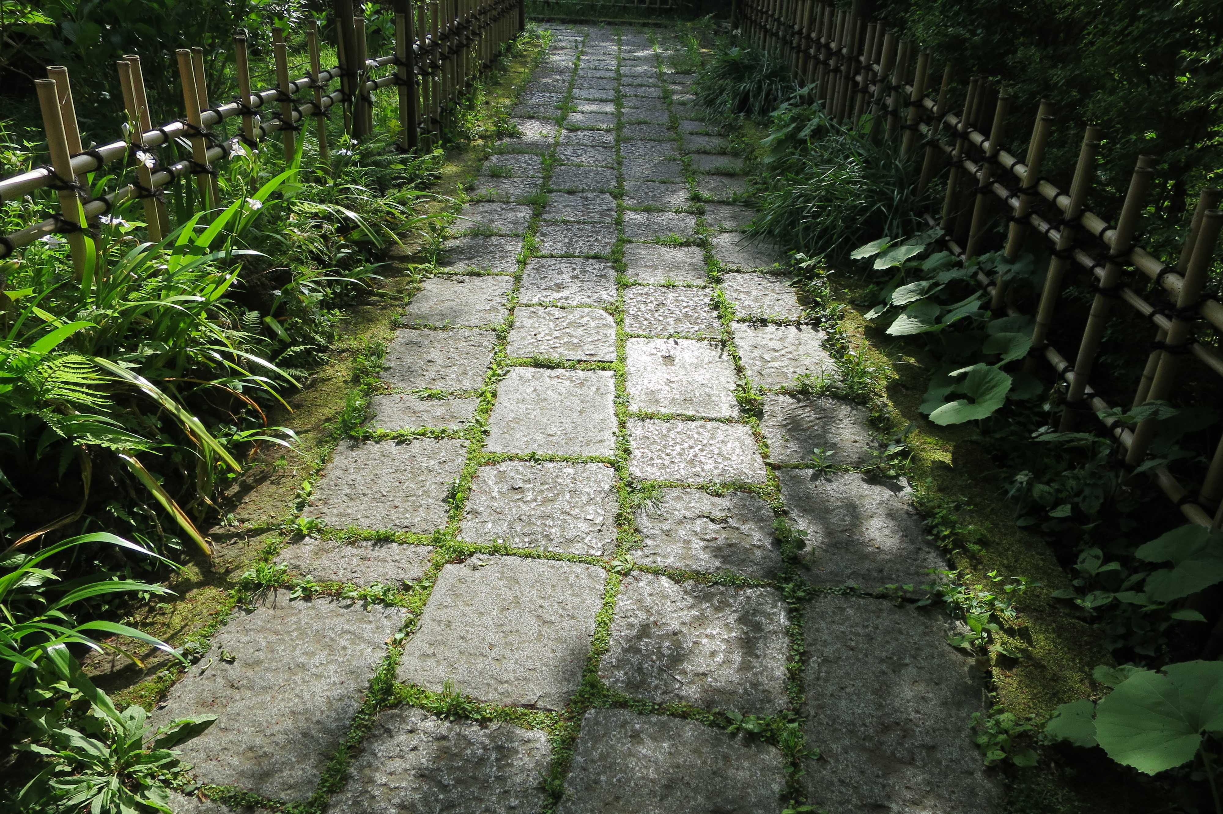 王禅寺 参道