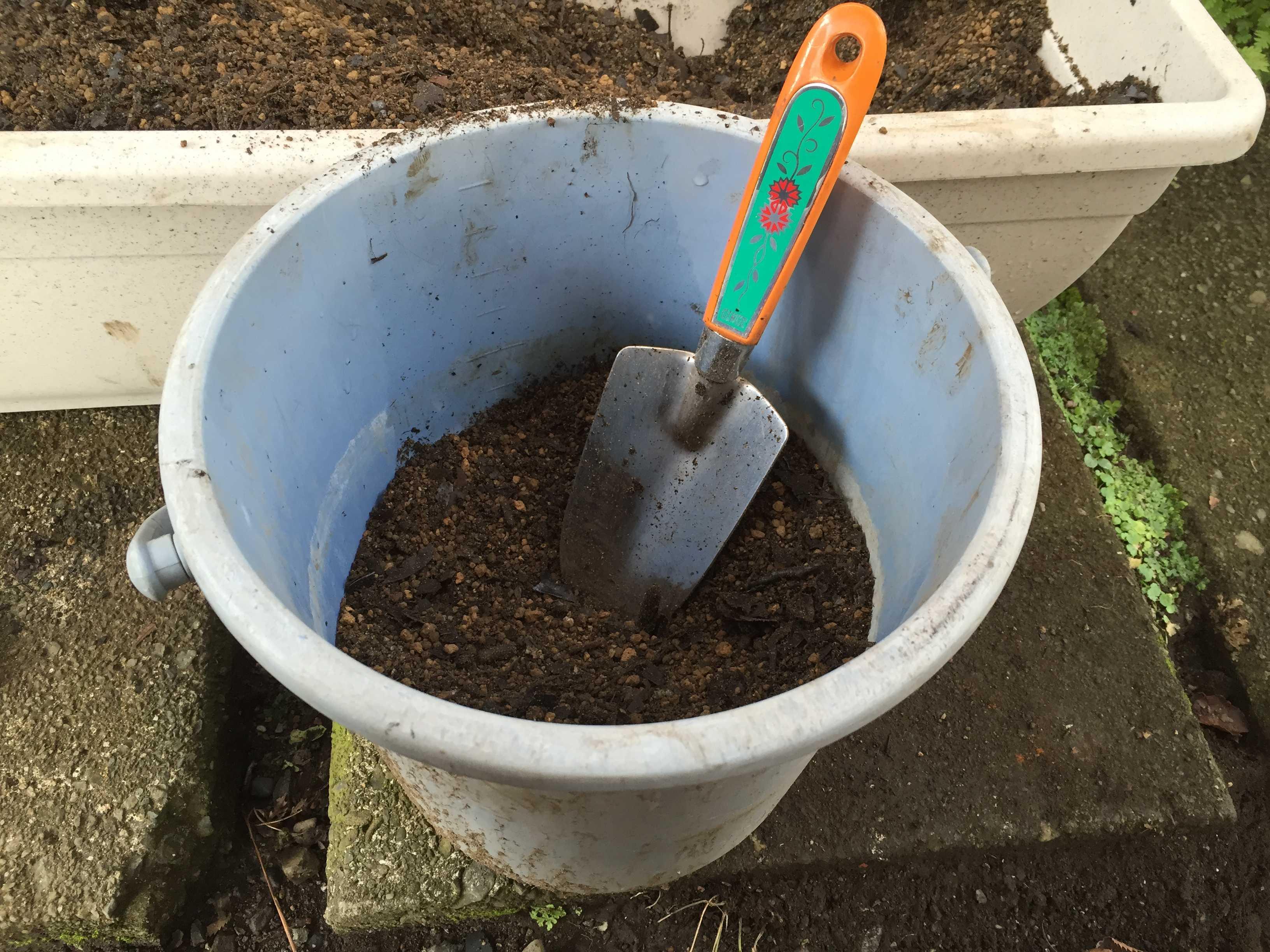 ヤマユリの種子繁殖/実生 - 播いたタネを隠すための「覆土」用の土