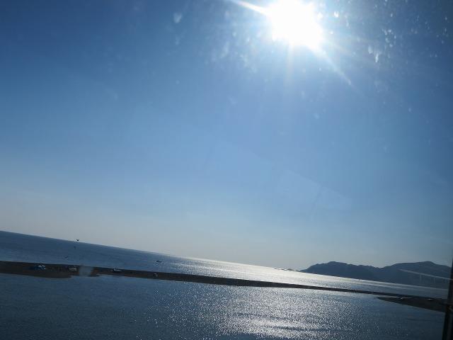 お日様に照らされる土佐(高知)の海