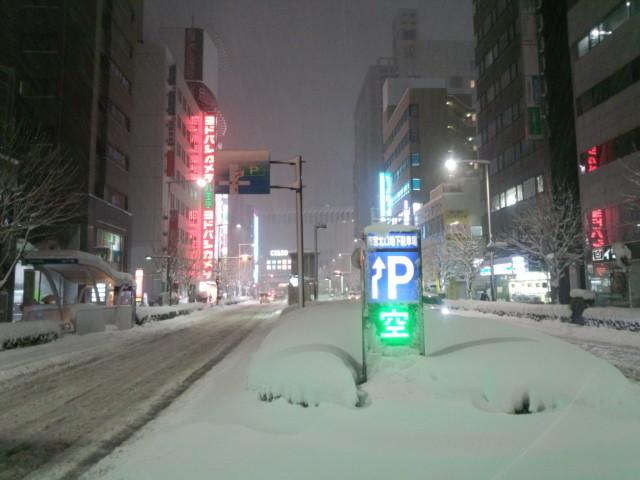 大雪の日の八王子駅前の桑並木通り