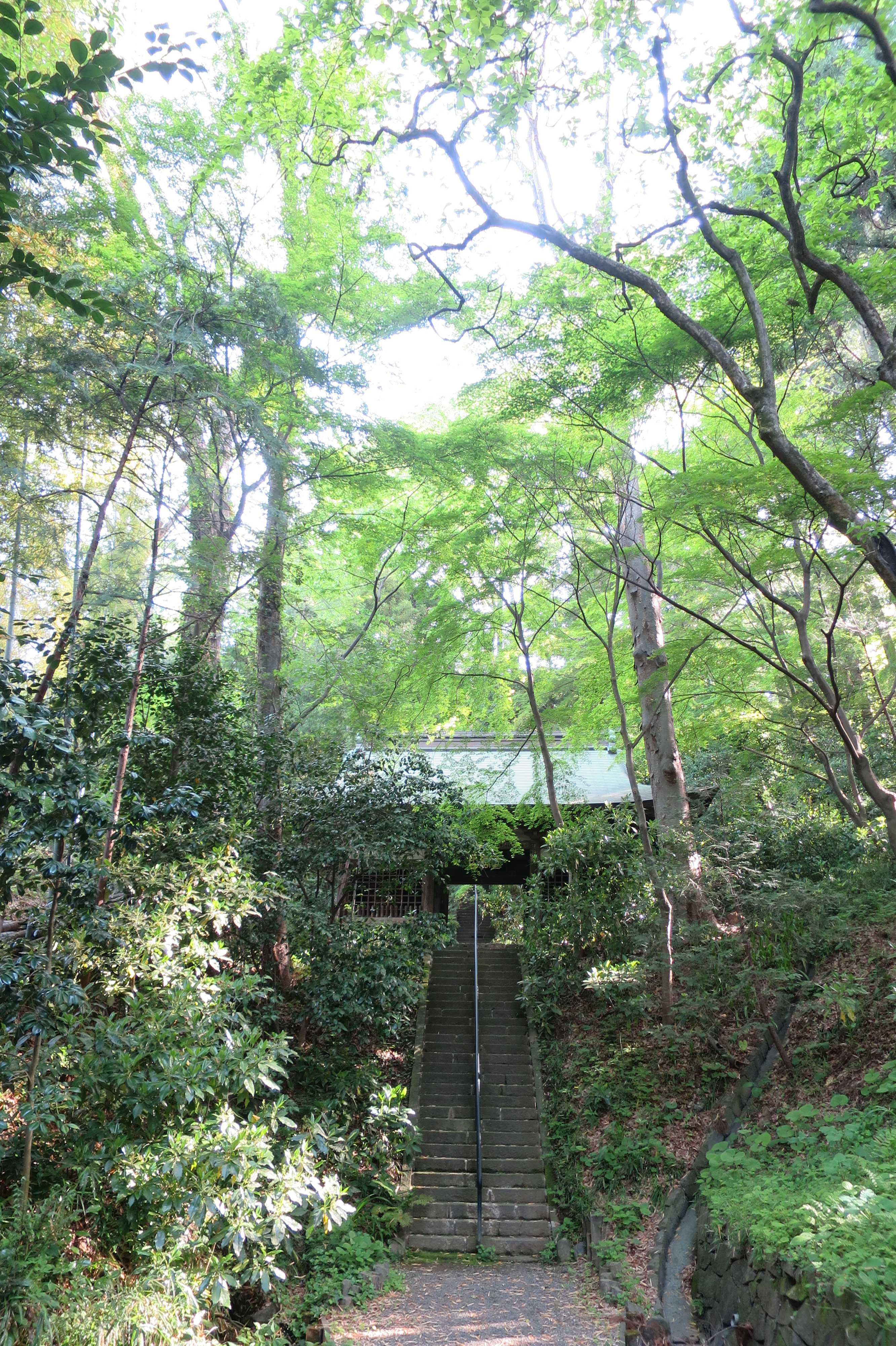 王禅寺の山門(仁王門)