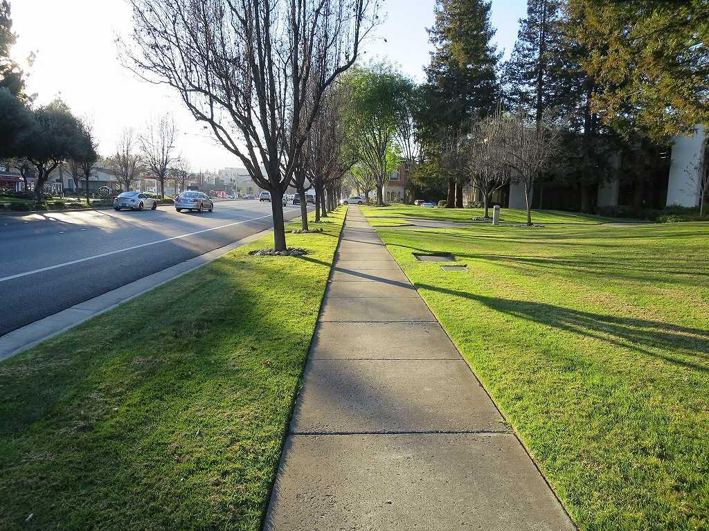 クパチーノの歩道