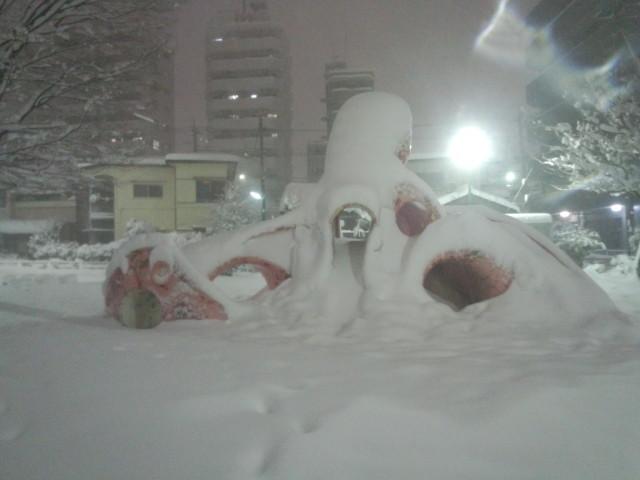 大雪の日の大ダコ
