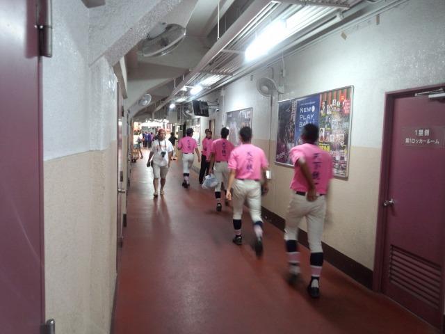 天下統一のピンクTシャツを着ていた日鶴ナイン