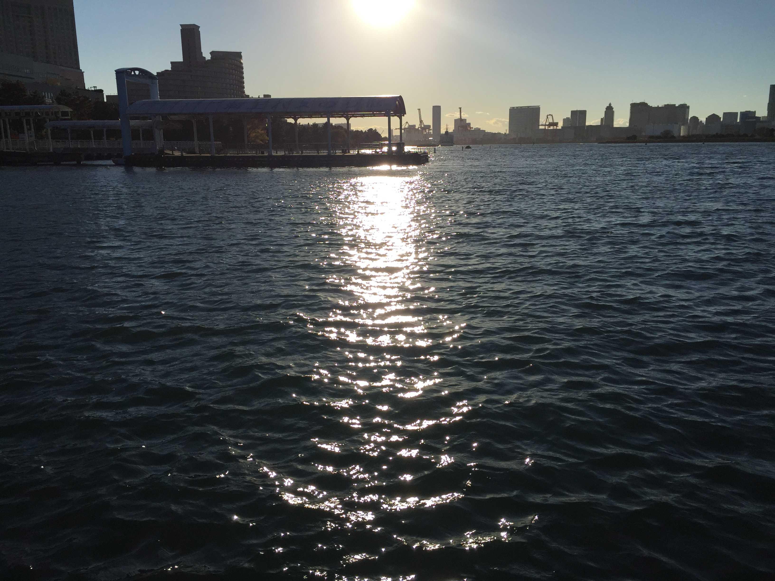 桟橋 - お台場海浜公園