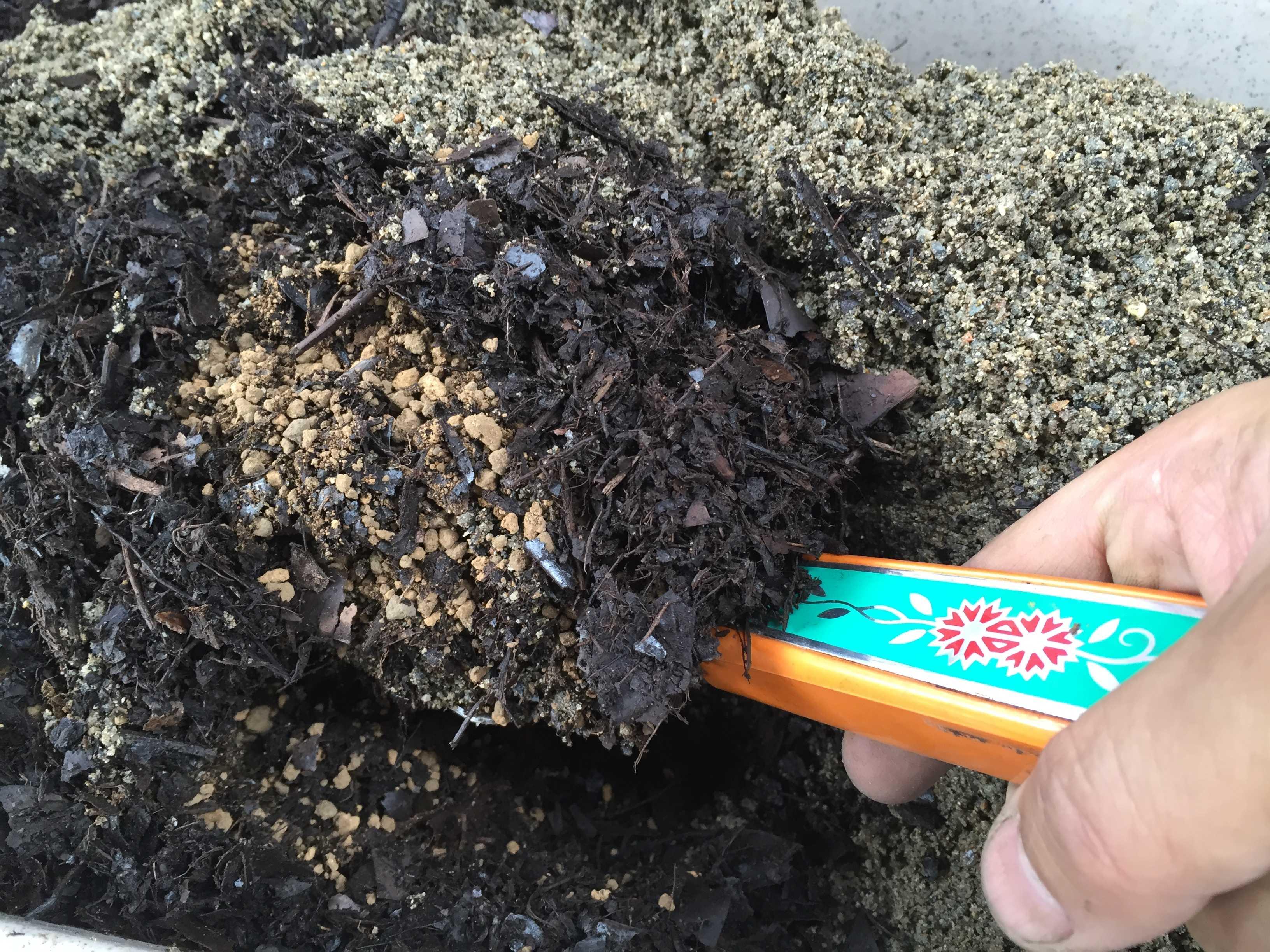 ヤマユリの種子繁殖/実生 - 用土づくり用移植ごて