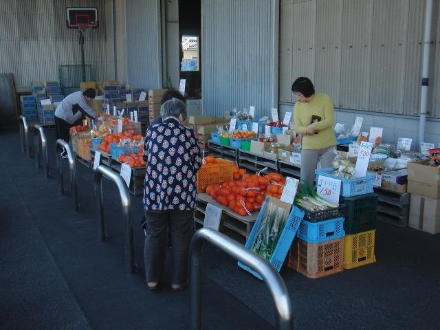 尾道・向島の柑橘類即売所