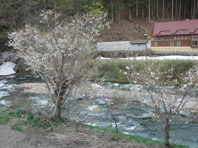 早春の福島県檜枝岐村