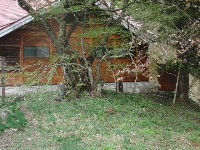 福島県檜枝岐村 - 入定仏(お行の塚)