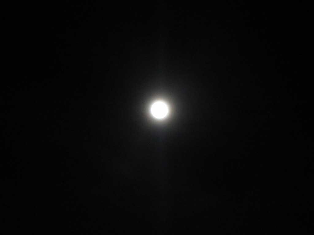 サニーベールのお月様