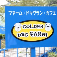 【旅】GOLDEN DOG FARm へいざ!!