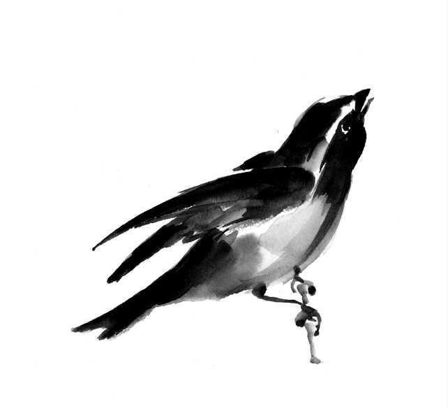 キビタキ,鳥,水彩画,イラスト,野鳥
