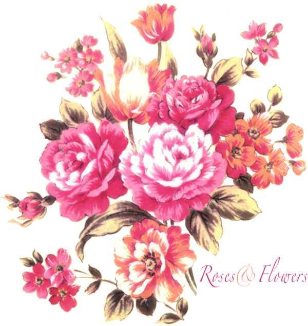 バラ,花束,イラスト