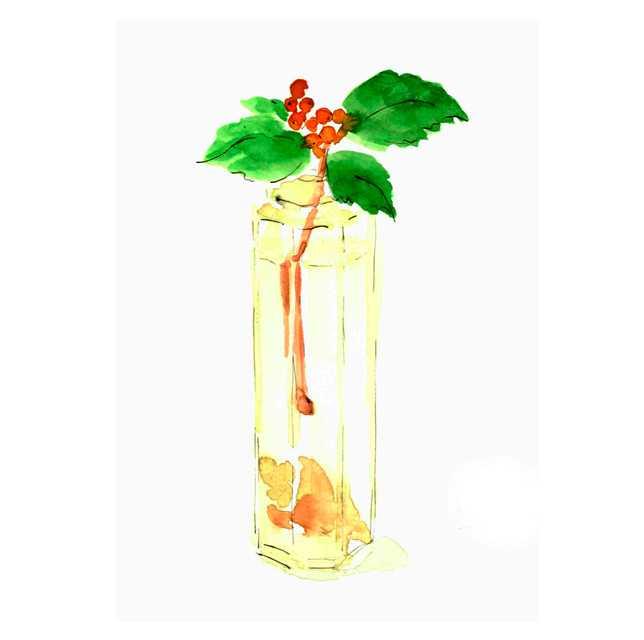 貝,瓶,六角形,高塚由子_Yoshiko,Taaktsuka,水彩画,イラスト