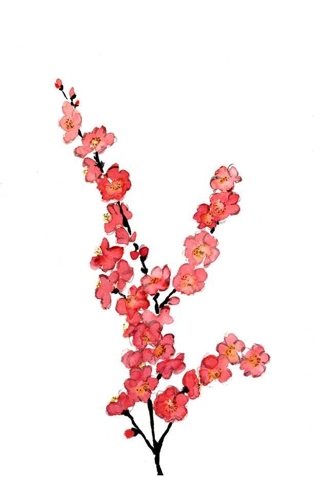 桃の花,水彩画,イラスト,春,植物,花,素材