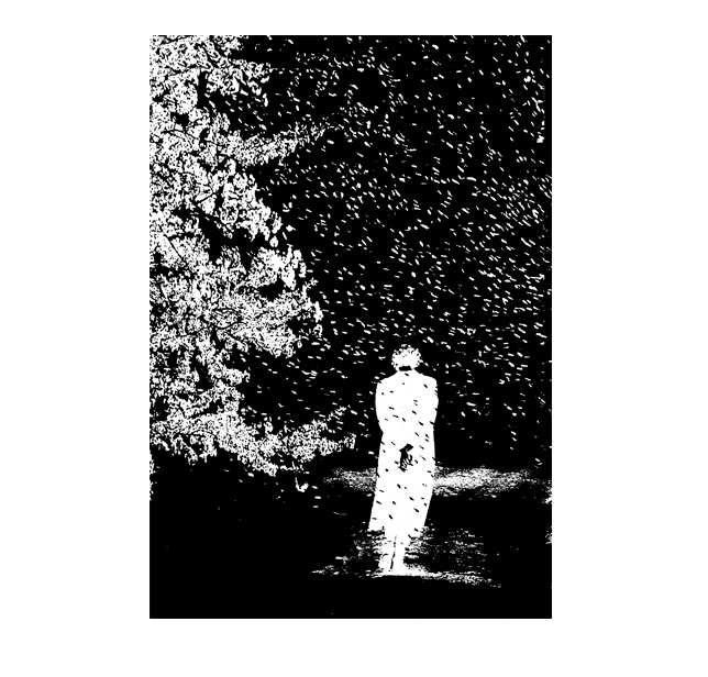 仕事絵,桜吹雪,春,サクラ,高塚由子,Yoshiko,Taaktsuka,挿画,イラスト