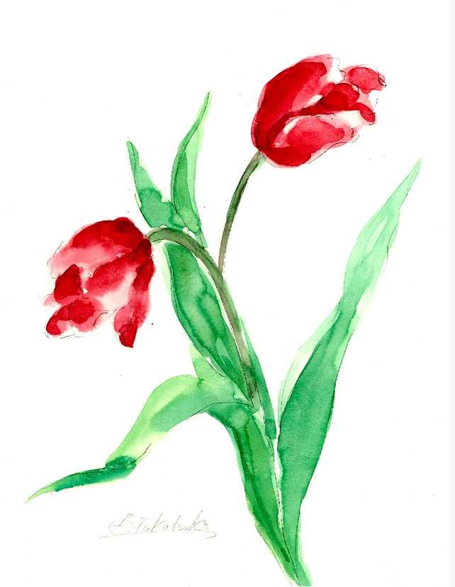 チューリップ,水彩画,イラスト,花,春,植物,素材