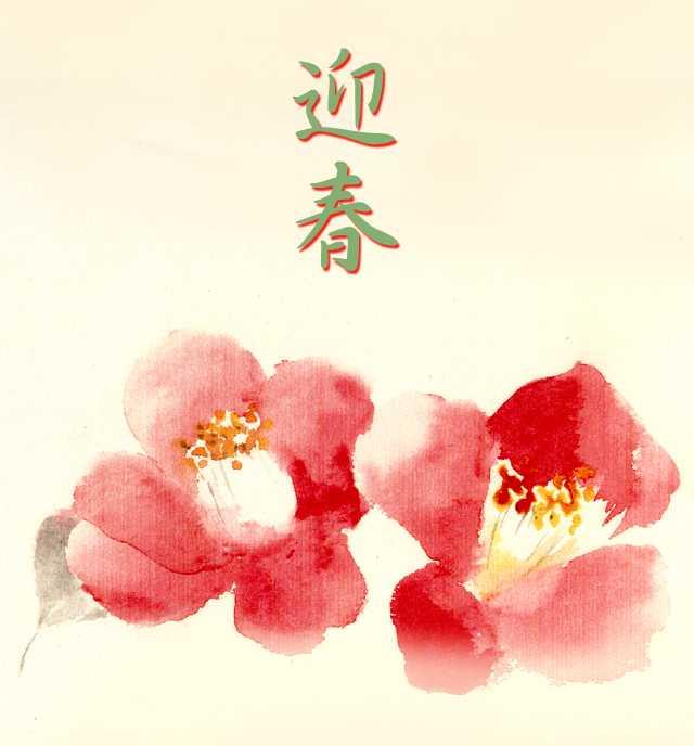 椿,水彩画,イラスト,花