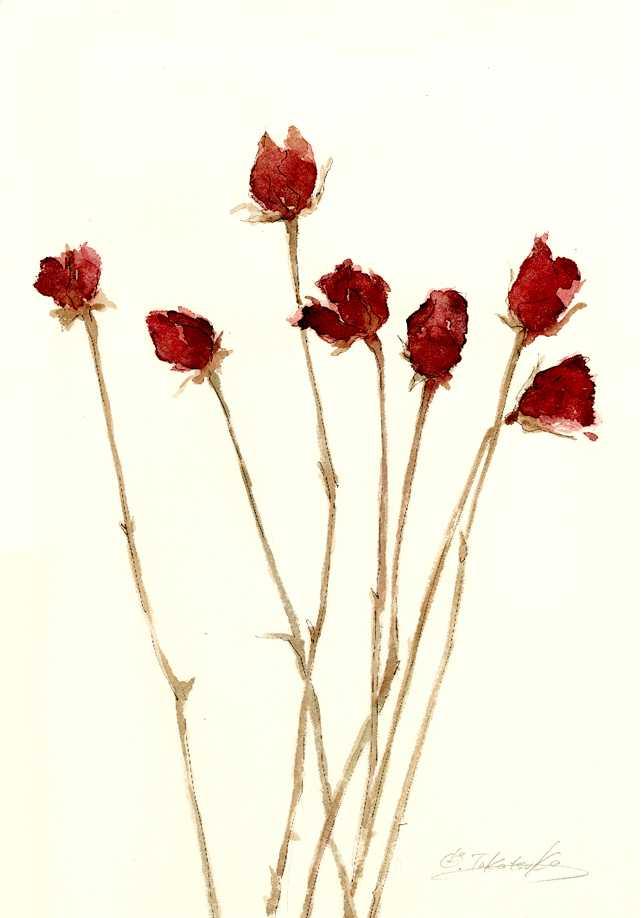深紅の薔薇よ永遠に 水彩工房 高塚由子のブログ